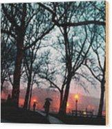 Evening Rain Photofresco Wood Print