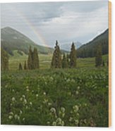 Evening Rainbow In The Rocky Mountains Wood Print