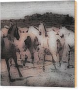 Evening Roundup - Featured In Comfortable Art Group Wood Print