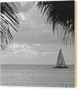 Evening Sail In Paradise Wood Print