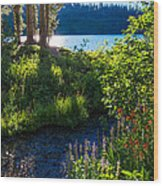 Evening Shadows At Lake George Wood Print