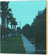 Evening Stroll At Isle Of Palms Wood Print