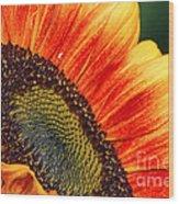 Evening Sun Sunflower Wood Print