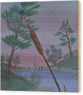 Evening Wish Wood Print by Robert Meszaros