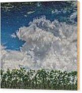 Reflected Everglades 0203 Wood Print