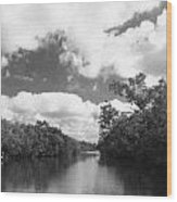 Everglades Dock Wood Print
