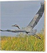 Everglades Flight Wood Print