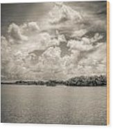 Everglades Lake 6919 Bw Wood Print