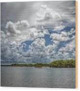 Everglades Lake 6919 Wood Print by Rudy Umans