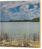 Everglades Lake 6930 Wood Print by Rudy Umans