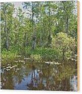 Everglades Lake Wood Print