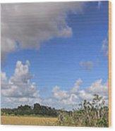 Everglades Landscape Panorama Wood Print