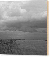 Everglades No.1 Wood Print