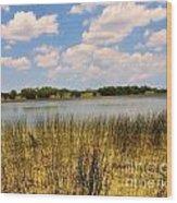 Everglades Pond Wood Print