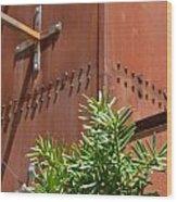 Evergreen Against Rust Wood Print