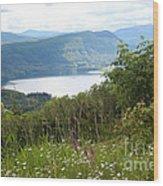Evergreen Overlook Wood Print