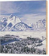 Evergreen Trees On A Snow Covered Wood Print