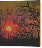 Every Night I Can Hear The Promise Of A Gentle Awakening Wood Print