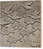 Evolution No. One Wood Print