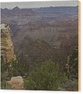 Evolution Of Nature At The Grand Canyon Wood Print