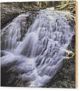 Evolution Waterfall Wood Print