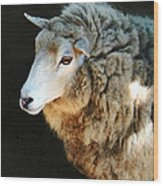 Ewe Are So Beautiful Wood Print