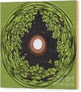 Excellent Drainage Wood Print