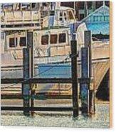 Excursion Boat Wood Print