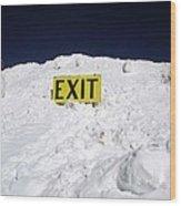 Exit Wood Print by Fiona Kennard