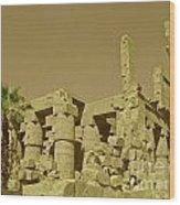 Exotic Egypt Wood Print