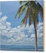 Exotic Palm Tree Wood Print