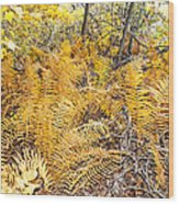 Exotic Plants Of The Dunes Wood Print