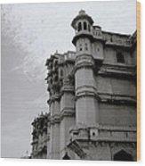 Exotic Udaipur Wood Print