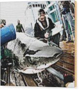 Expedition Great White Crew Conducts Wood Print