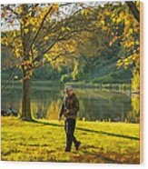 Exploring Autumn Light Wood Print by Steve Harrington