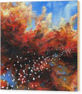 Explosion In The Sky Wood Print