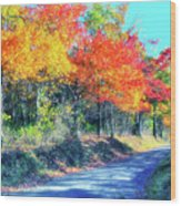 Explosion Of Color - Blue Ridge Mountains I Wood Print