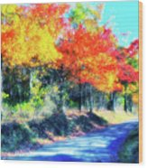 Explosion Of Color - Blue Ridge Mountains II Wood Print