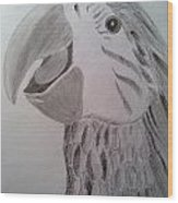 Expressive Parrot Wood Print