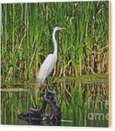 Exquisite Egret Wood Print