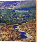 Extasy In Cairngorms National Park Scotland Wood Print