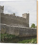 Exterior Of Cahir Castle Wood Print