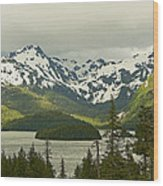 Eyak Lake Landscape Wood Print