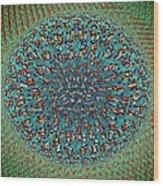 Eye #1 Wood Print