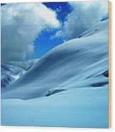 Eye Catcher In Snow Wood Print