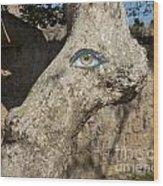 Eye Eye Wood Print