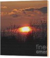 Eye In The Sky Wood Print
