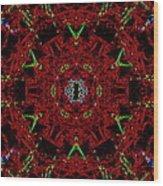 Eye Of Cthulhu Wood Print