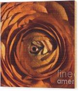 Eye Of The Bloom Wood Print