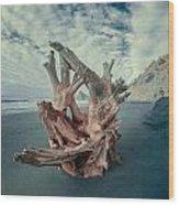 Eye Of The Driftwood Wood Print